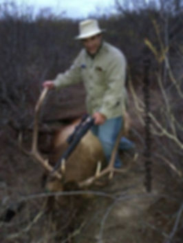 Tom Cassell harvested elk at Thompson hunting Lodge