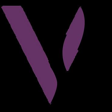 VolteDancewear Lockup Logomark Color.png