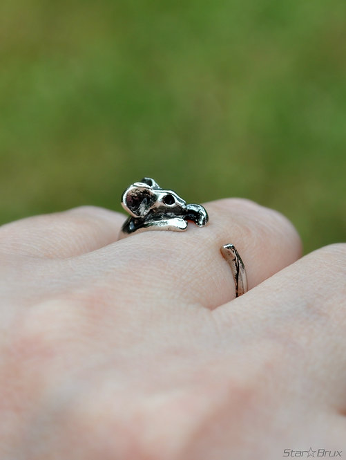 Rat/Mouse Ring