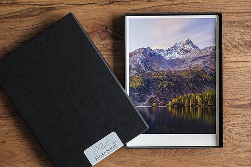 Portfolio-Box Edition 2