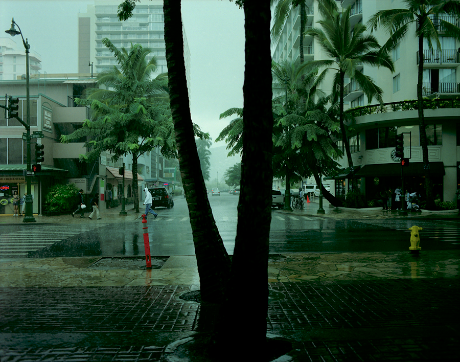 Rain Tree #1