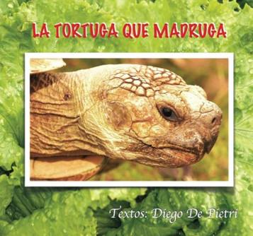 42 LA TORTUGA QUE MADRUGA.jpg