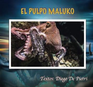 36 EL PULPO MALUKO.jpg