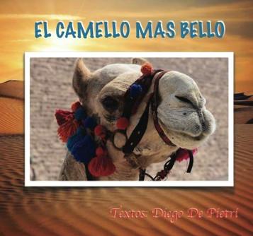 38 EL CAMELLO MAS BELLO.jpg