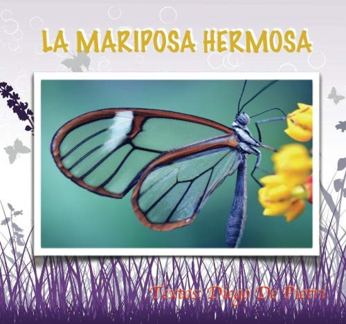 39 LA MARIPOSA HERMOSA.jpg