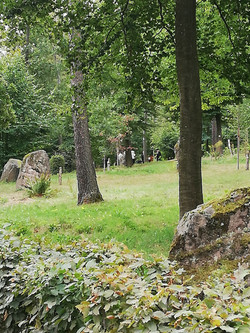 forêt cimetière