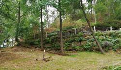 cimetière en forêt
