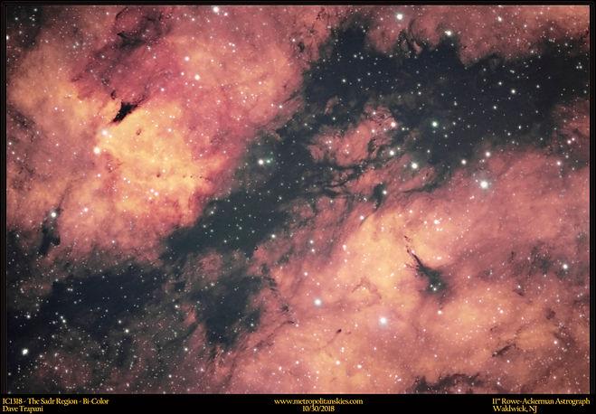 IC1318_Trap_10.30.18.jpg