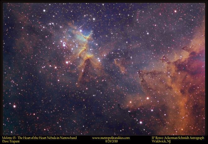 IC1805_Trap_9.29.18_CROP.jpg