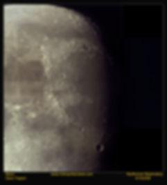 DSI3_Moon_Mos_Trap_42.14.08.jpg