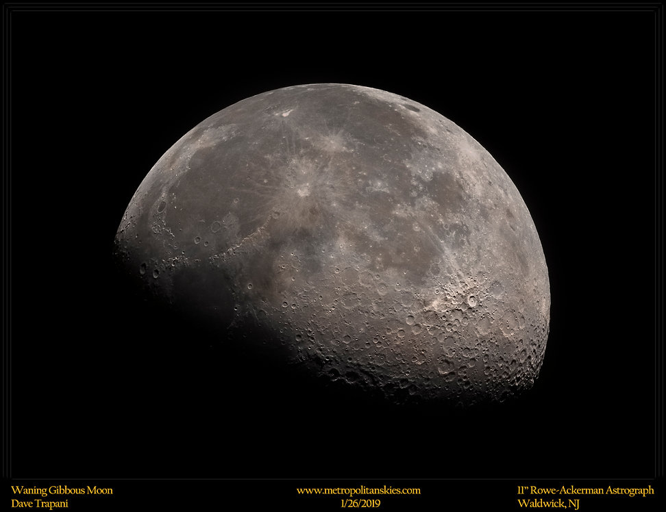 Half Moon_Trap_1.26.19.jpg