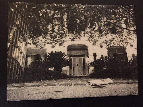 Dansereau House Tissue Paper Canvas 5x7