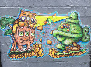 City Kitty Collab: Shell Shock with TurtleCaps