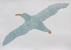 Albatrost