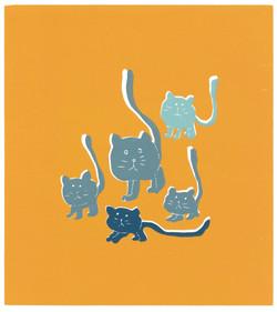 Kattene våre