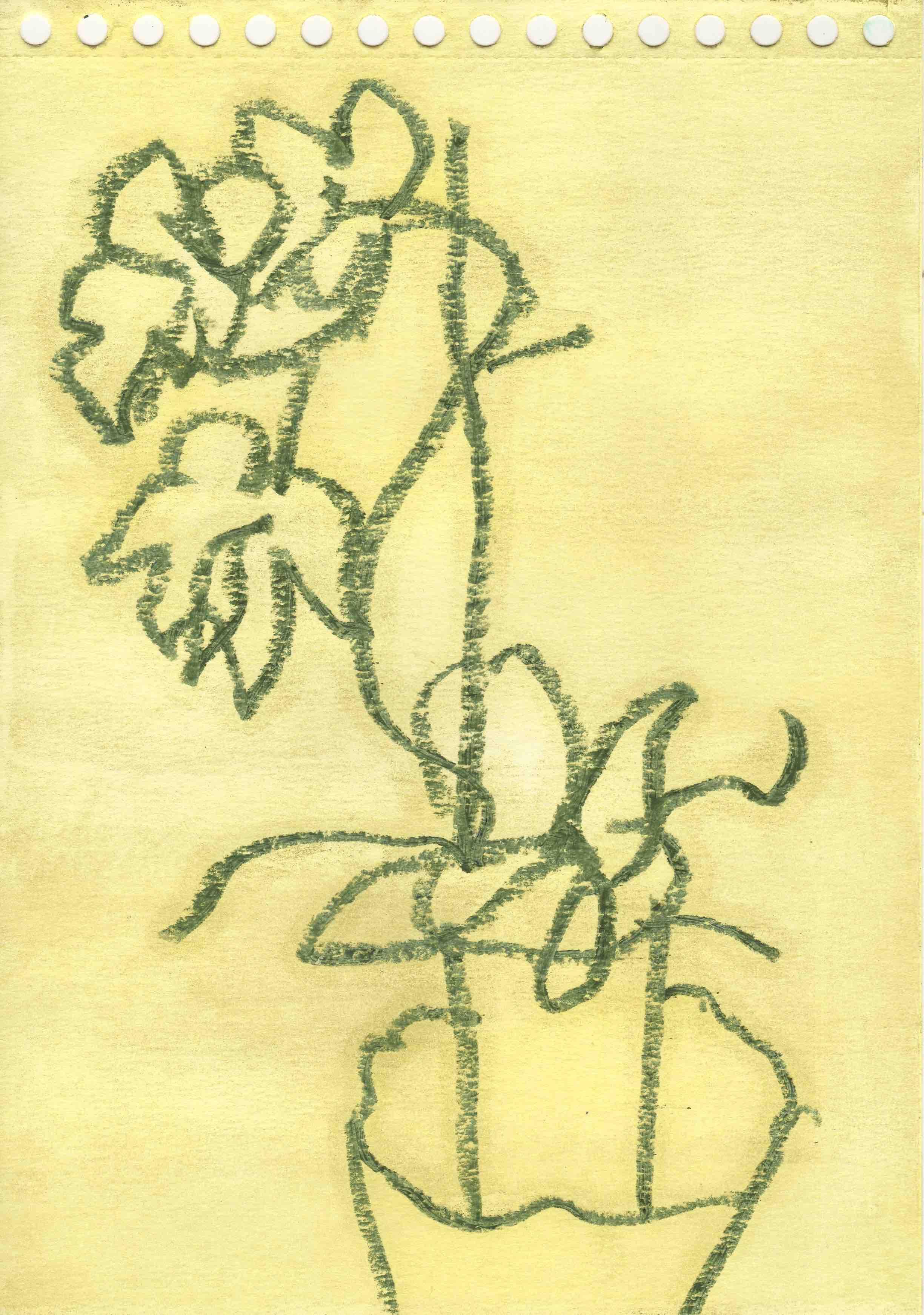 Potteplante