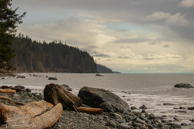 Bear Beach - Vancouver Island