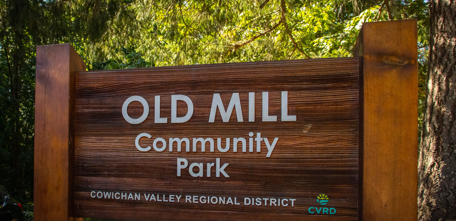 Old Mill Park (Freedom Visuals Photography)