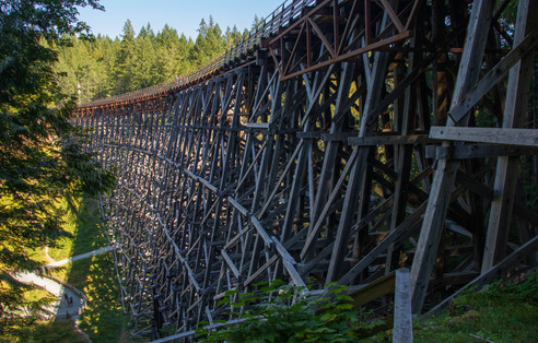 Kinsol Trestle (Freedom Visuals Photography)