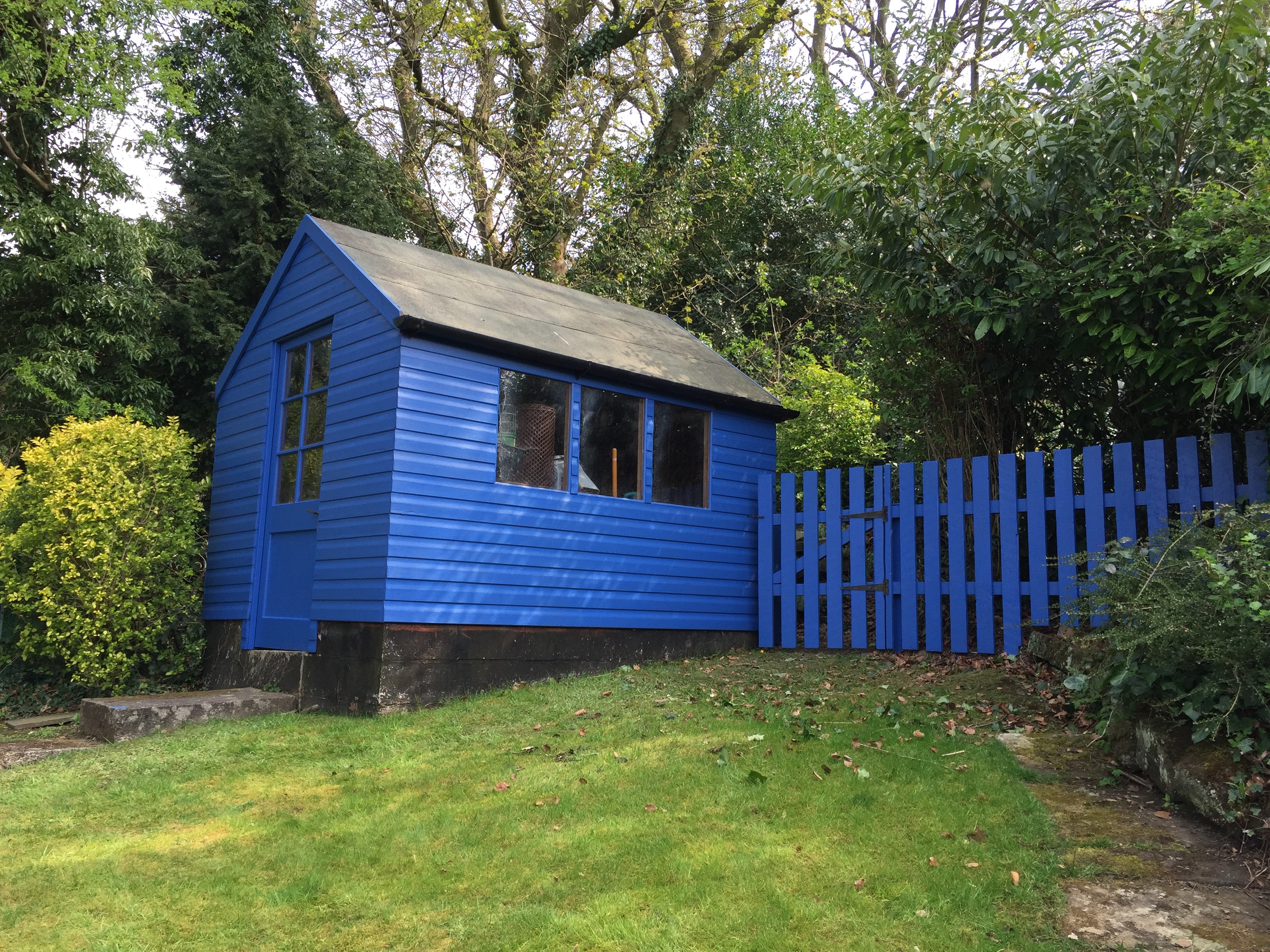 Garden Shed & Fence - painting