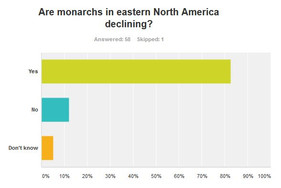 Are monarchs declining? Most people think so