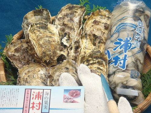 三重県浦村産牡蠣