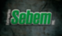 logo Entreprise Sebem
