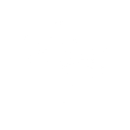 Freedom360 Logo