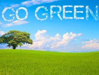 Go Green!...A Professional Organizer's Environmental Impact Story