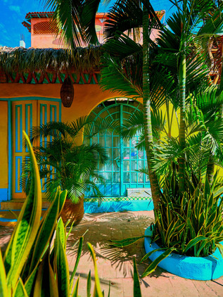 Puertovallarta0325-clr.jpg