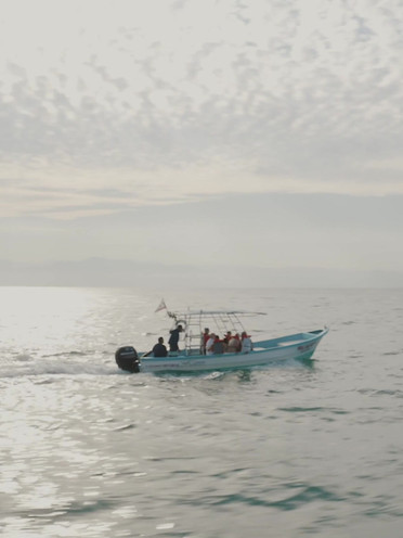 Puerto Vallarta 15s - Pacific Waters.mp4