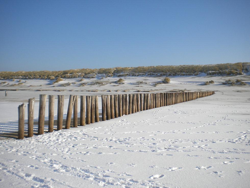 Ameland winter feb 2012 003.jpg
