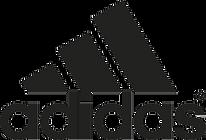 SportPerformance_Logo.png