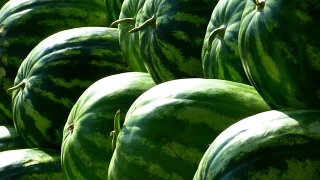 melons-197025_1920.jpg