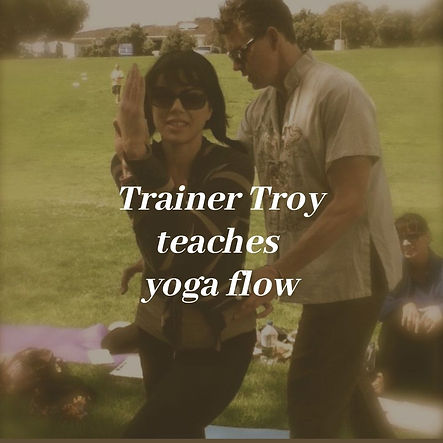 Copy of Trainer Troy teaches aerial.jpg
