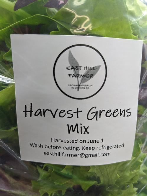 Harvest Greens Mix