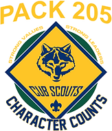 P205 Scouts.png
