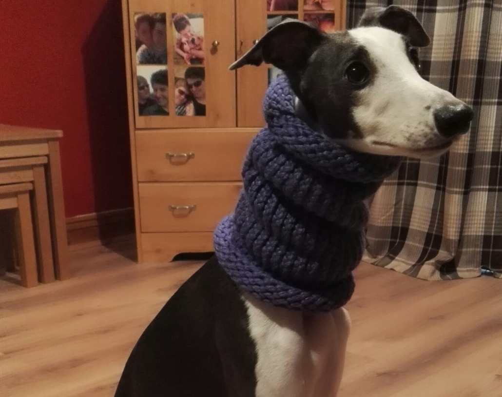 Sighthound Snood