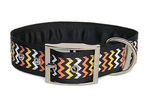 1.5 Inch Luxury Flat Buckle Collar (2).j