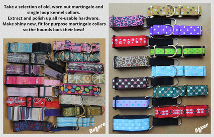 Collars for kennel dogs....