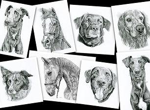 drawings.jpeg