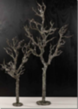 jern-trees.png