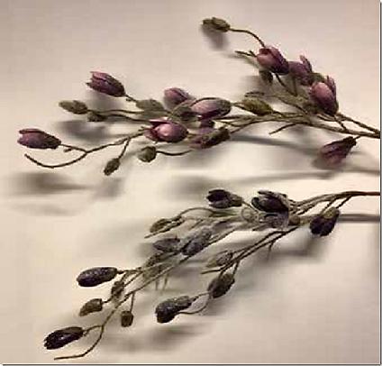 lukkede.magnolia.png