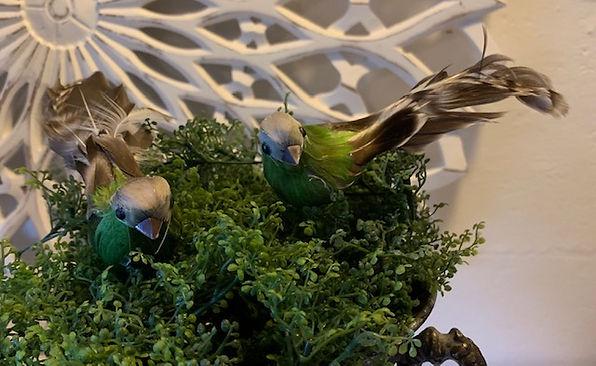 green-natur-fugl.jpg