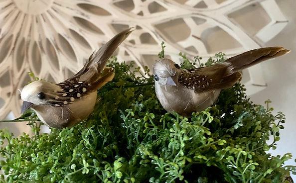 natur-fugl-prikker.jpg