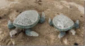skildpadder-med-mosaik.png