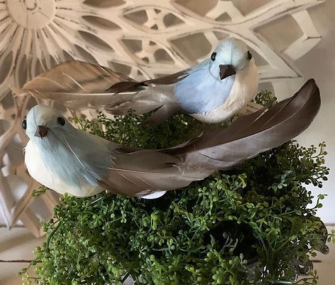 stor-blue-fugl.jpg