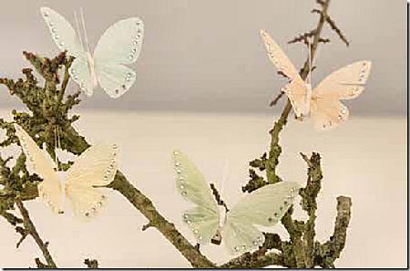 pastel-sommerfugle.png