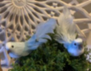 blue-fugl.jpg