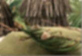 paafugl-green.png